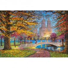 """Пазлы """"Центральный парк, Нью-Йорк"""" 1500 элементов (170277)"""